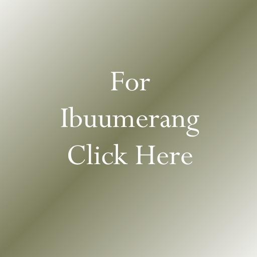 ibuumerang home business