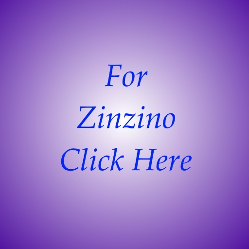 zinzino business to work from home